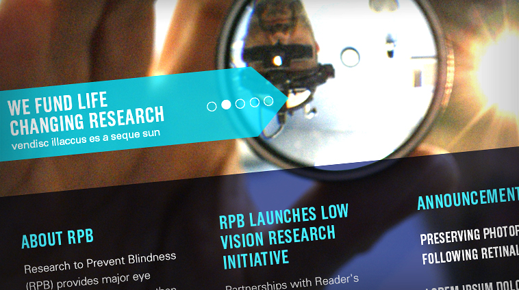 Research to Prevent Blindness site design